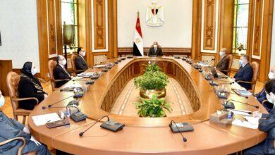 صورة تفاصيل ما دار في اجتماع الرئيس السيسي لتصنيع السيارات الكهربائية في مصر