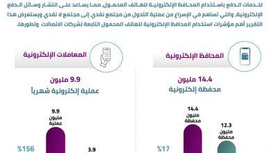 صورة كيف يستخدم المصريون المحافظ الإلكترونية على المحمول ؟