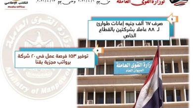 صورة القوى العاملة : 1216 فرصة عمل في 6 محافظات .. وحصر العمالة غير المنتظمة في 27 محافظة